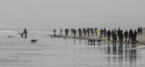 Gathering on the Beach Photo by Maggie Ingram